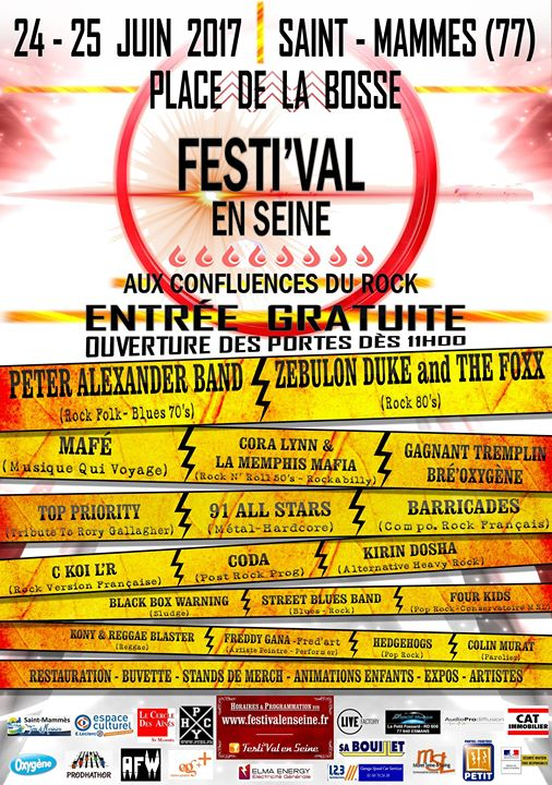 Festival en seine